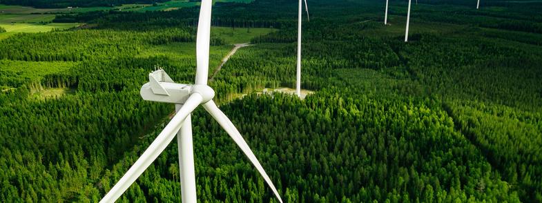Onshore windmill farm
